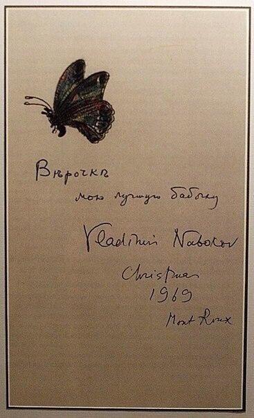 Бабочки, нарисованные Набоковым для жены. CAN_Ukxp8Dc