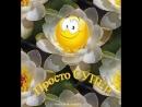 Doc256841823_495604442-1.mp4