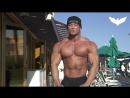 Бодибилдинг мотивация - Testosterone Union