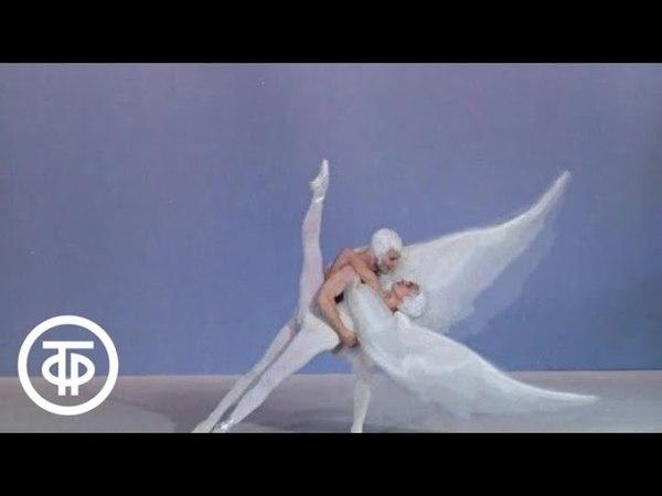 Миниатюра Летите, голуби в исполнении Станислава Власова и Галины Феоктистовой (1973)