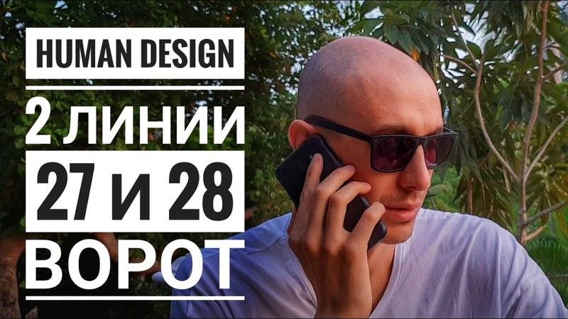 Дизайн Человека 27 и 28 ворота. 2 линии Даниил Трофимов. Human Design