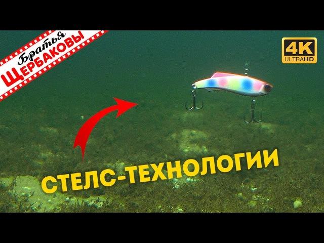 Как раттлин MADNESS играет на глубине Подводные съемки Зимняя рыбалка Братья Щербаковы 4K