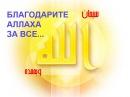 «Благодари Аллаха и будешь богатым! Простая формула благосостояния!»