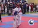 Рождественский турнир по тхэквондо в честь российско-азербайджанской дружбы 2017