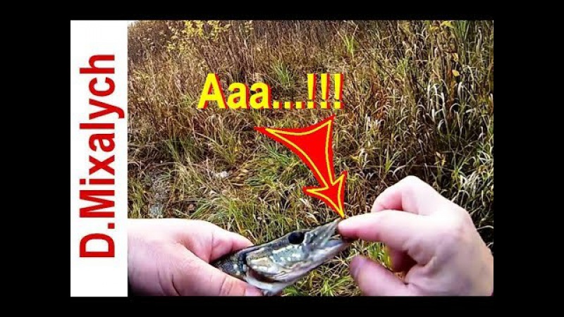 Меня укусила щука Тестирую самодельный воблер Рыбалка китайскими воблерами смотреть онлайн без регистрации