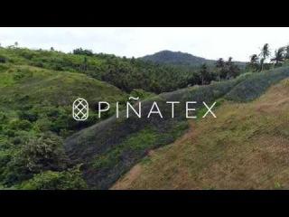 This is Piñatex®