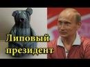 ПЕРВЫЕ ЗАЯВЛЕНИЯ НЕ ВЕРИМ В РОССИИ ВЫБОРОВ НЕТ ЭТО ПЕРЕИЗБРАНИЕ ПУТИНА