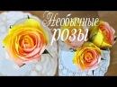 Маленькие необычные розы из бумаги нескольких цветов Алина Романовна