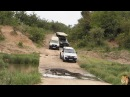 Large Crocodile Road Block On Bridge In Kruger Park
