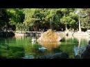 Пруд с лебедями Крым Алупка Воронцовский дворец