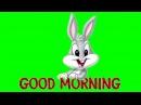 FREE GREEN SCREEN Bugs-Bunny ☯ CHROMA KEY ☯ ФУТАЖ ХРОМАКЕЙ КРОЛИК ☛ yda4aTV