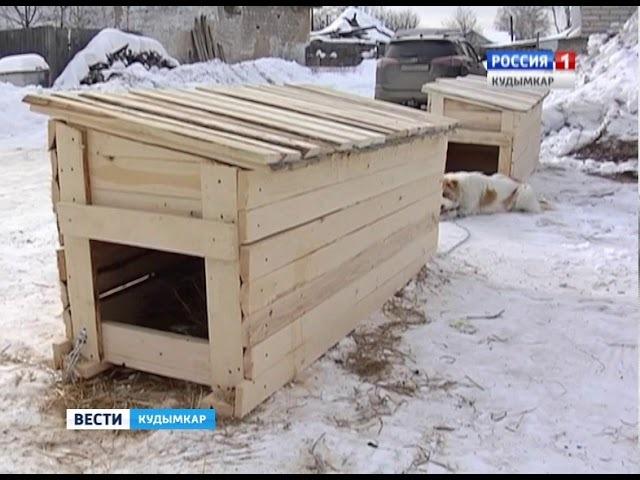 Вести. Кудымкар 16.03.18