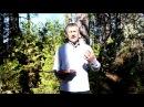 Християнська передача Євангельське Слово №63 Зустріч Никодима з Ісусом Христом