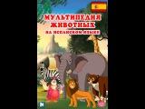 Мультипедия животных на испанском языке Letra C - el Canario
