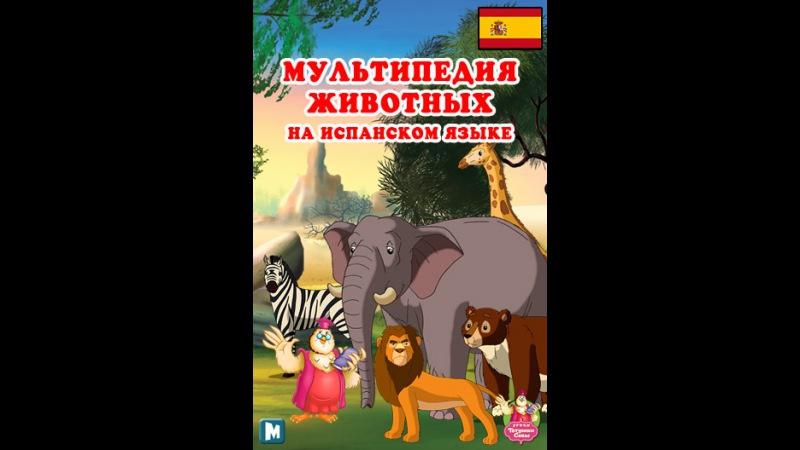 Мультипедия животных на испанском языке Letra R - el Ratón
