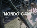 MONDO CANE englischer Trailer