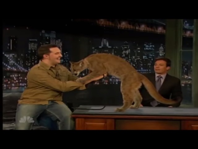 A Giant Owl Attacks Jimmy Fallon and Jeff Musial - Screams like a litlle girl