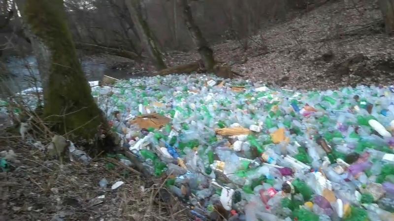 Самоочищение реки