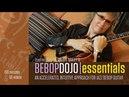 Bebo Dojo: Essentials - Intro - Sheryl Bailey