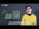 Семиклассник Коля объясняет что такое криптовалюта и блокчейн СЕМИКЛАССНИК