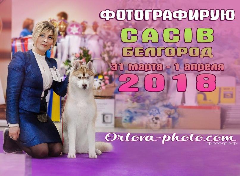 Катерина Орлова | Воронеж