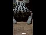 Periscope LIVE [Катя снова танцует Тверк, а я пою]