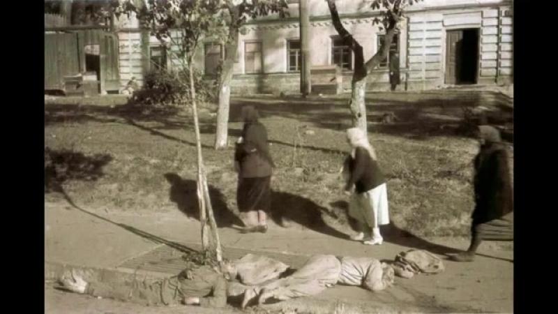 Киев в годы фашистской оккупации, 1941-1943 год