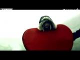 Armin van Buuren vs. Rank 1 (feat. Kush) - This World Is Watching Me (Official Music Video)