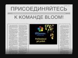 5 интересных фактов о ТМ Bloom