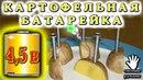 КАРТОФЕЛЬНАЯ БАТАРЕЙКА 4,5 Вольта из Одной Картошки