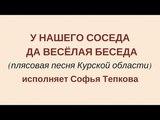 У НАШЕГО СОСЕДА ДА ВЕСЕЛАЯ БЕСЕДА (плясовая Курской области). Сольное народное пение ЗАТЕЯ.