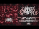 CHAINSAW CASTRATION MULTIPLE STAB WOUNDS 2016