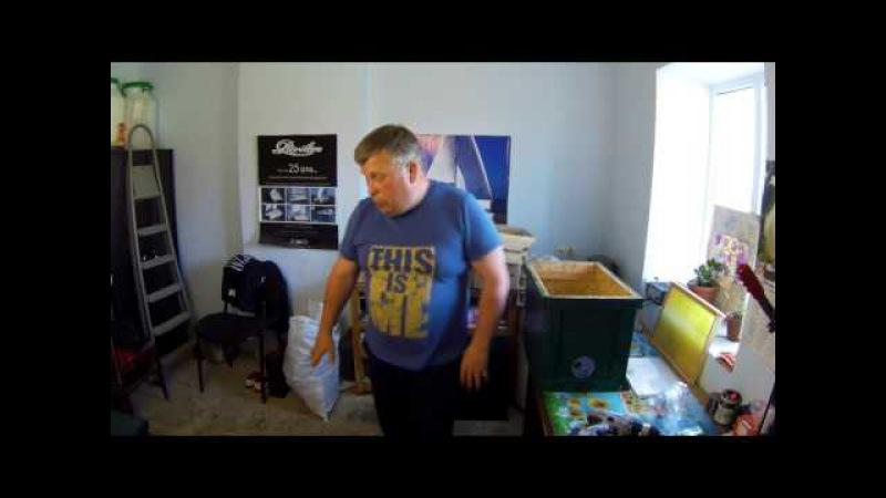 Как правильно собрать ловушку для поимки роя