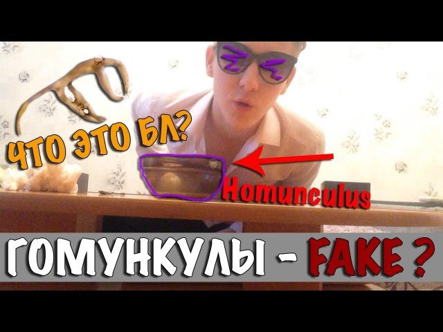 Сделал ГОМУНКУЛА для своей девушки на НОВЫЙ ГОД 2 РАЗОБЛОЧЕНИЕHomunculus) / RUBTSOV
