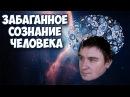 Константин Кадавр Забаганное сознание человека Нарезка стрима
