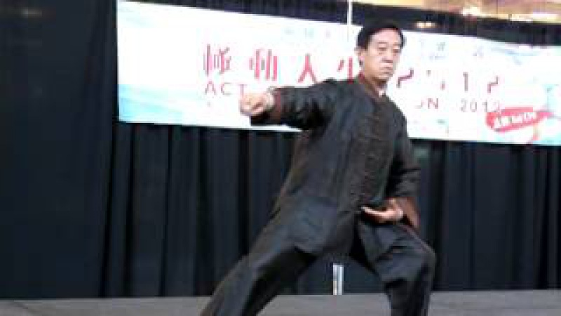 Master Chen Zhenglei 陳正雷 Tai Chi Demo in Richmond on May 19, 2012