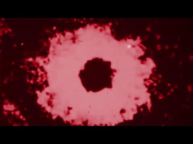Elad Magdasi - Red Skies [FLR04]