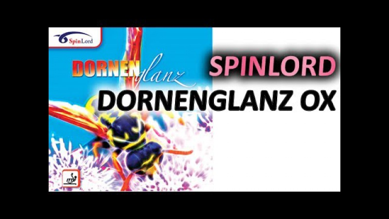 Test SPINLORD Dornenglanz OX on RED BLACK Pride D blade
