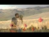 Sting - Fields of Gold, HD with (Lyrics)