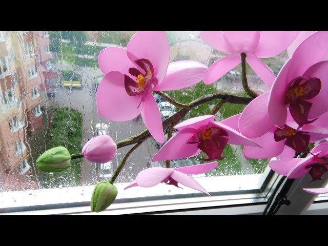Мастер-класс Орхидея фаленопсис из фоамирана