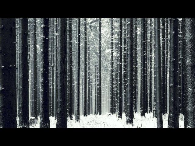 CRASPORE x CHERNOBURKV – ZIMΛ Spectrium