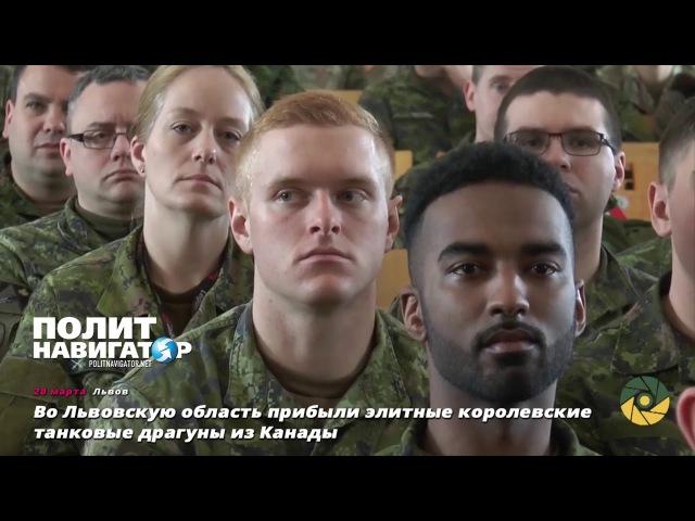 Во Львовскую область прибыли элитные королевские танковые драгуны из Канады