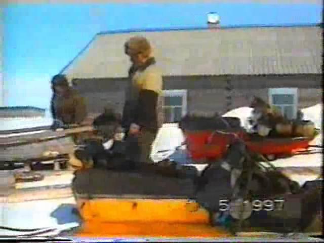 Шойна. Кулёмки 1997г.