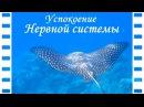 ❀ Образный РЕЛАКС ❀ СОН ❀ успокоение НЕРВНОЙ системы ❀