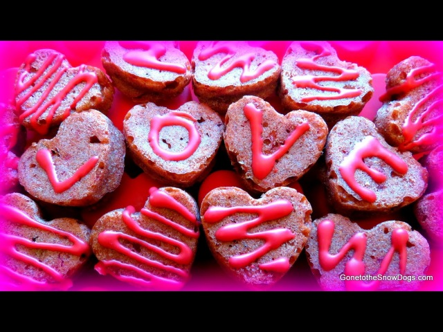 Red Velvet PUPCAKES Homemade Valentine's Dog Treats DIY Snacks with the Snow Dogs 22