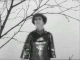 Нина Пантелеева Листья кружатся