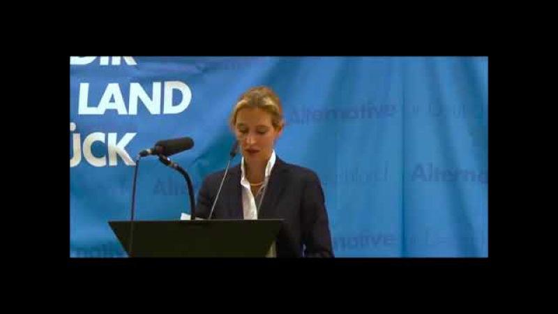 Alice Weidel AFD: Darum will man wirklich die Bargeldabschaffung, aber nicht mit uns!