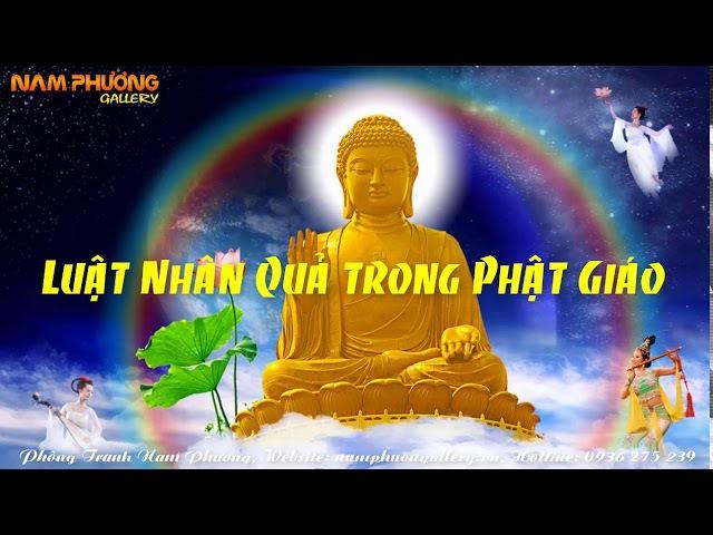 Luật Nhân Quả trong Phật Giáo | Thuyết Pháp Phật Giáo