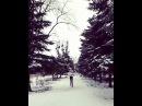 """Margarita Dang on Instagram """"Когда хочешь согреться во время фотосета. 📷❄ фото видео зима снег февраль оченьхолодно танец простознай bonj..."""