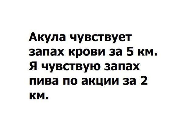 Фото №456247937 со страницы Люси Бушуевой